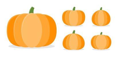 Sammlung von Herbstkürbissen in verschiedenen Formen vektor
