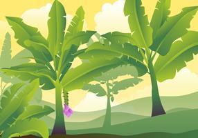 Banan träd löv illustration