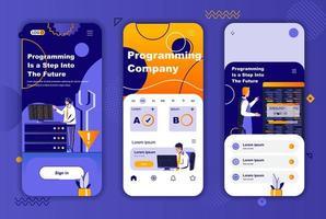 Programmierunternehmen einzigartiges Design-Kit für Geschichten aus sozialen Netzwerken. vektor