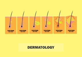 Hautdermatologie für jeden Zweck vektor
