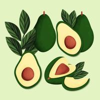 Vektor handgezeichnete Avocados