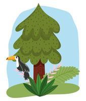 söt djur fågel toucan i gren lövverk träd tecknad design vektor