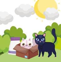 svart katt i gräs och vit katt i låda med mat husdjur