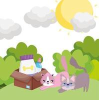 tecknade katter med låda mat i gräs husdjur vektor