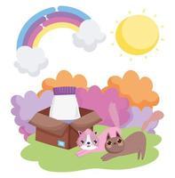 katter med mat i låda gräs sol husdjur vektor