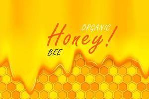 Biene im Papierschnitt mit Waben. Schablonendesign für Imkerei und Honigprodukt.