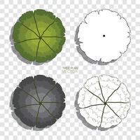 Baumplan. abstrakte Zeichnungsskizze für Landschaftsgestaltung gesetzt. Vektor.