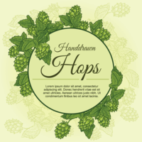 Hopfenpflanze Hintergrund vektor