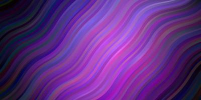 mörk lila, rosa vektormall med kurvor.