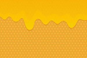 Honig Hintergrund Vektor Design Illustration