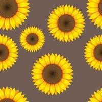 nahtlose Mustervektorentwurfsillustration der Sonnenblume vektor