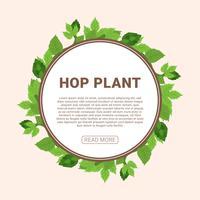 Hopfenpflanze-Vektor-Illustration