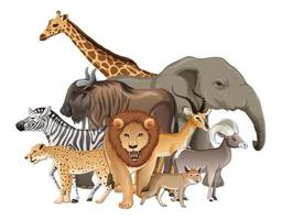grupp av vilda afrikanska djur på vit bakgrund
