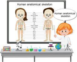 junger Arzt, der das menschliche anatomische Skelett erklärt vektor