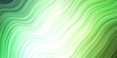 hellgrüner Vektorhintergrund mit gebogenen Linien.