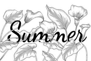 calla lilja blomma och blad handritad sommar linje konst vektor
