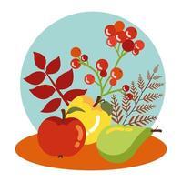 Früchte des Herbstes mit Blattdekoration