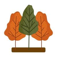 Waldbäume Jahreszeitlaub Herbst lokalisierter Designweißhintergrund