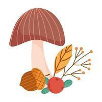 Herbstpilz Eichel Beerenzweig Blatt isoliert Design weißen Hintergrund vektor