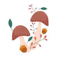 Herbstpilze Eichelzweig Blätter isoliert Design weißen Hintergrund vektor