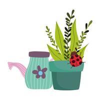 Gartenarbeit, Gießkanne Topfpflanze mit Marienkäfer isoliertes Design vektor