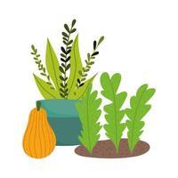 Gartenarbeit, Topfpflanzung, die Blätter und Kürbisnatur isolierte Ikonenart pflanzt vektor