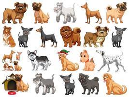 olika roliga hundar i tecknad stil isolerad på vit bakgrund vektor