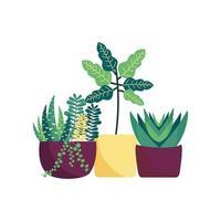 isolerade växter inuti krukor vektor design
