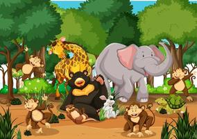 många olika djur i skogsscenen