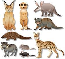 Satz von isolierten wilden afrikanischen Tieren auf weißem Hintergrund