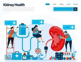 Abbildung zur Überprüfung der Nierengesundheit. Krankheiten und Störungen der Niere. Kontrolle und Handhabung der inneren Organe. Entwickelt für Zielseite, Vorlage, Benutzeroberfläche, Website, mobile App, Flyer, Broschüre vektor