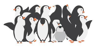 glückliche Pinguinfamiliencharaktere in verschiedenen Posen eingestellt vektor