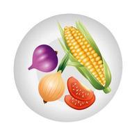 Tomaten Knoblauch Zwiebel und Mais Gemüse Vektor Design