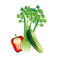 Sellerie Gurke und Pfeffer Gemüse Vektor Design