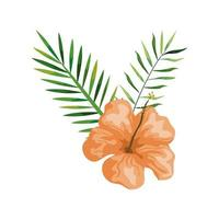 Hibiskus mit Zweigen und Blättern, tropische Natur, Frühling Sommer botanisch vektor