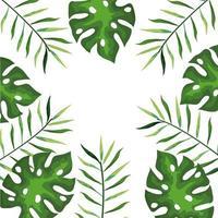 Rahmen von Zweigen mit tropischen Blättern, Naturkonzept vektor