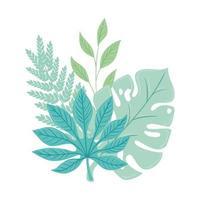 tropische Zweige mit Blattpastellfarbe auf weißem Hintergrund vektor