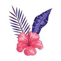Hibiskus schöne rosa Farbe mit Zweigen und Blättern, tropische Natur, Frühling Sommer botanisch vektor