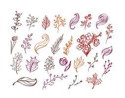 Satz Vektor Gekritzel Blumenelemente. Herbstkollektion. Blumengrafikdesign. Kräuter, Blätter, Stiefel, Tasse und wilde Blumen. Hand gezeichnete Vektor Botanik Textur. moderne Herbst saisonale Einrichtung