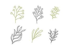 uppsättning vektor skisser och linje doodles logotyp organisk. handritade designelement isolerade blommor, blad, örter för dekorationsutskrifter, etiketter, mönster. illustration målarbok