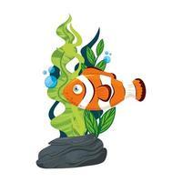 havs undervattensliv, anemonfisk med tång, clownfisk på vit bakgrund