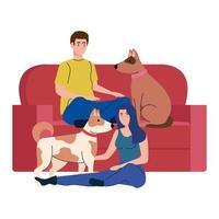 par med söta hundar husdjur och soffa, i vit bakgrund