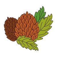 Hopfensamen mit Blättern auf weißem Hintergrund vektor