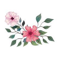Blumen rosa Farbe mit Zweigen und Blättern, auf weißem Hintergrund vektor