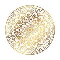 gyllene mandala i vit bakgrund vektor