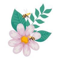 blomma med bin som flyger, på vit bakgrund vektor
