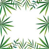 Rahmen der isolierten Ikone der tropischen natürlichen Blätter
