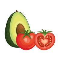 färska tomater med avokadogrönsaker vektor