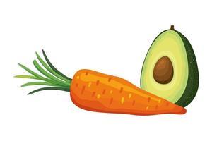 frische Karotte mit Avocado-Gemüse isolierte Ikone vektor