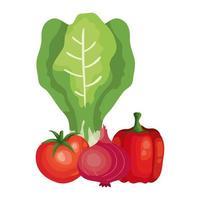 frische Tomate mit Gemüse isolierte Ikonen vektor